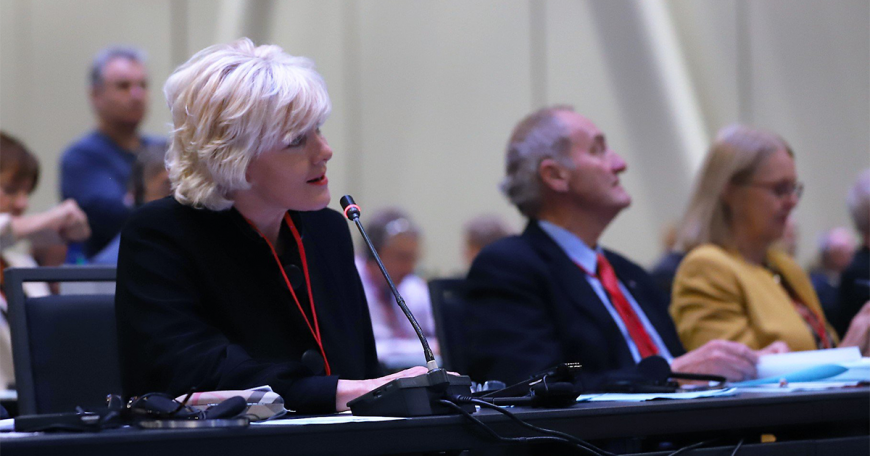 MP Cheryl Gallant attends NATO PA Assembly 1200
