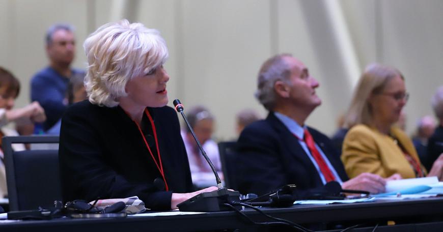 MP Cheryl Gallant attends NATO PA Assembly 1200